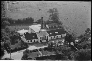 Hastrup mejeri 1952